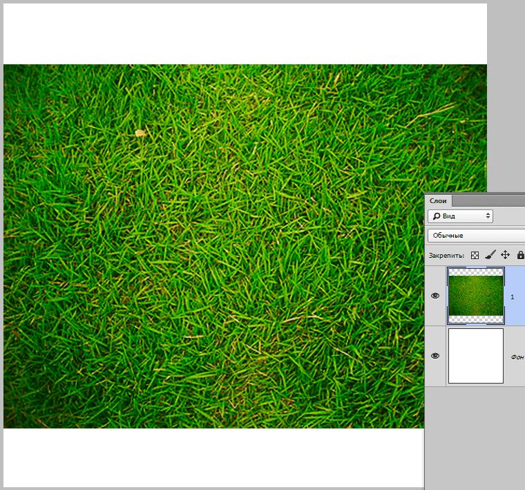 vyirezaem-krug-v-fotoshope-8