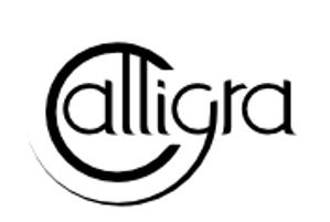 Galligra Gemini