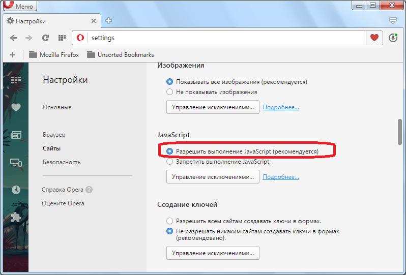 JavaScript в Opera разрешен