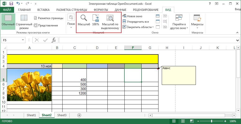 Масштаб в программе Microsoft Excel