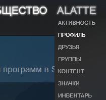 Профиль Steam