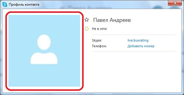 Скриншот автвра в Skype