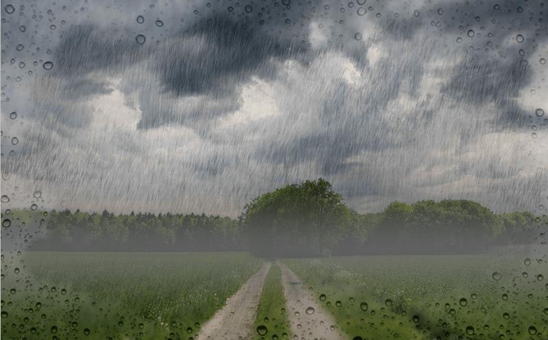 Результат обработки изображения с имитацией дождя