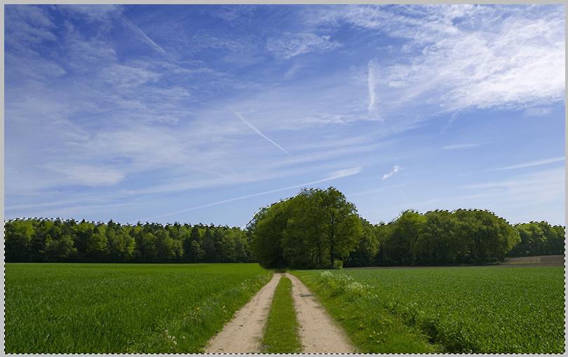 Выделение леса Быстрым выделением