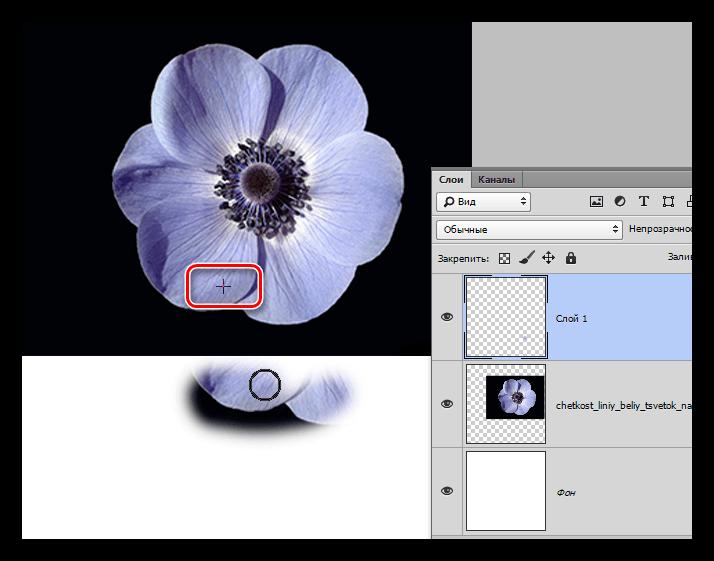 Копирование большого участка изображения нструментом Штамп в Фотошопе