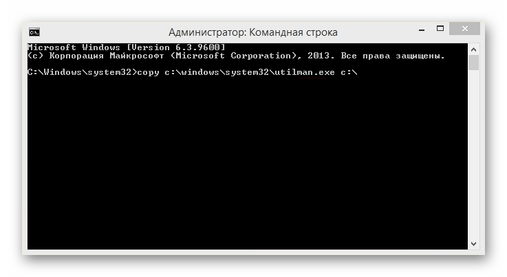 Windows 8 Консоль_1
