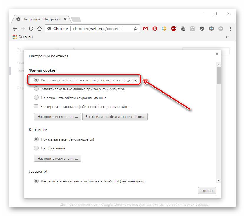 Разрешение сохранять куки в Google Chrome