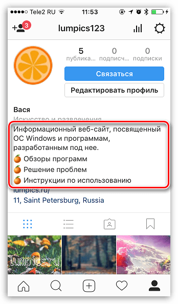 Структурированное описание профиля в Instagram