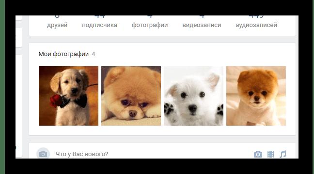 Блок с фотографиями на личной странице ВКонтакте.