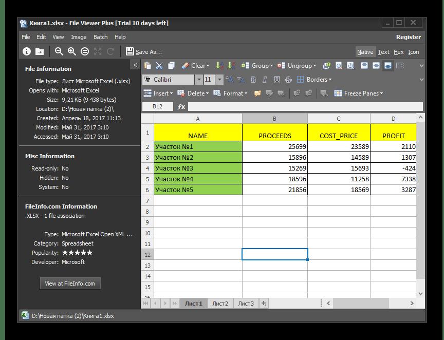 Файл открыт в программе File Viewer Plus