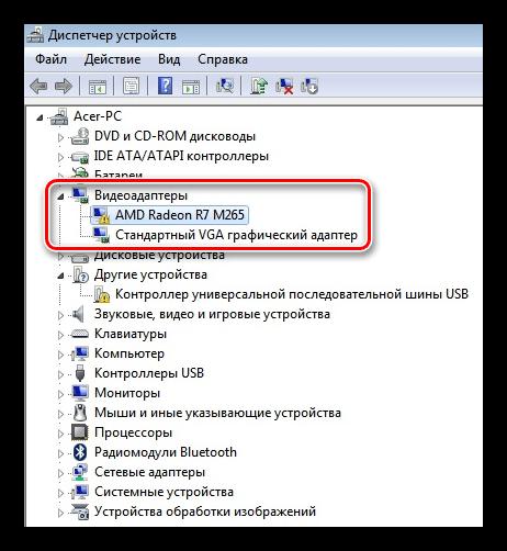 Ветка содержащая видео адаптеры в Диспетчере устройств Windows