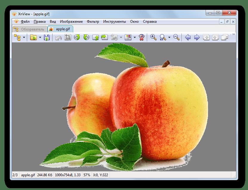 Изображения GIF открыто в программе XnView