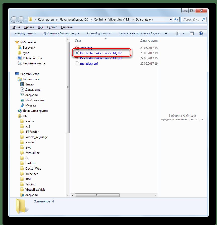 Конвертированный программой Calibre файл в формате FB2 в Проводнике Windows