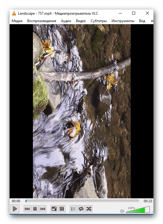 Общий вид перевернутого изображения в VLC