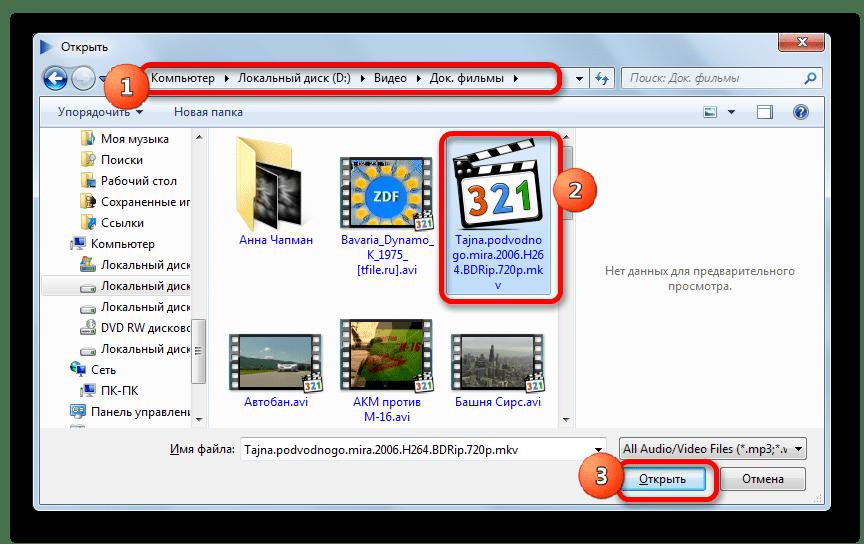 Окно открытия файла в программе MKV Player