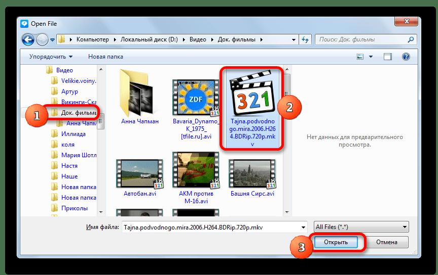 Окно открытия файла в программе RealPlayer