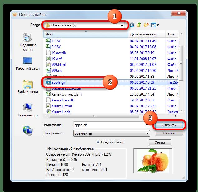 Открытие изображения GIF в окне открытия файла в программе XnView