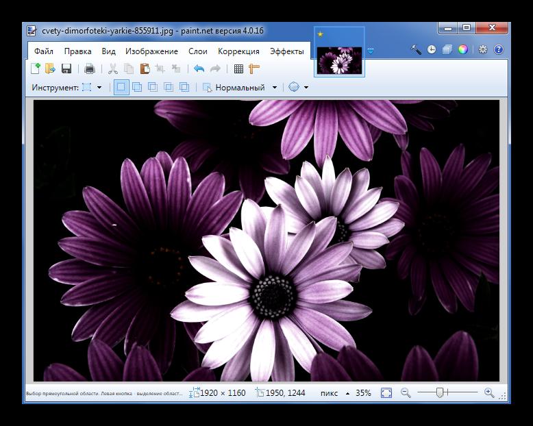 Применение эффекта Lameography в Paint.NET