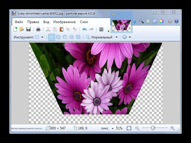 Применение эффекта Perspective в Paint.NET