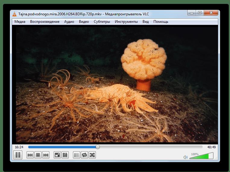 Проигрыш видео MKV в программе VLC Media Player