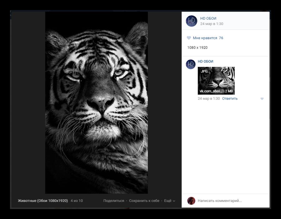 Скачиваемое изображение в режиме полноэкранного просмотра ВКонтакте