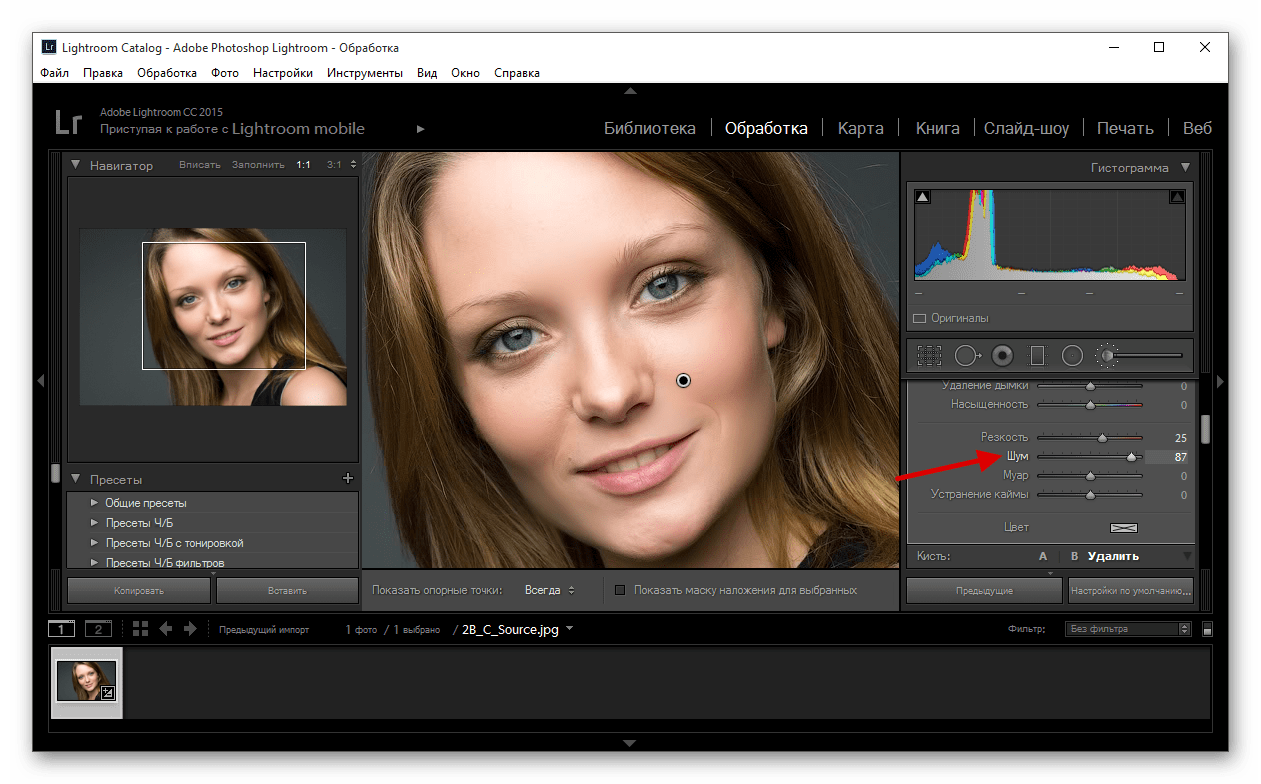 Уменьшение шума изображения в программе Adobe Photoshop Lightroom