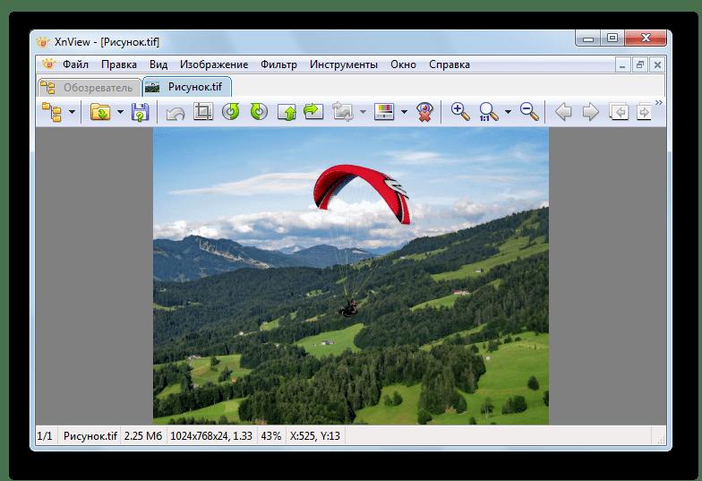 открытый файл в XnView