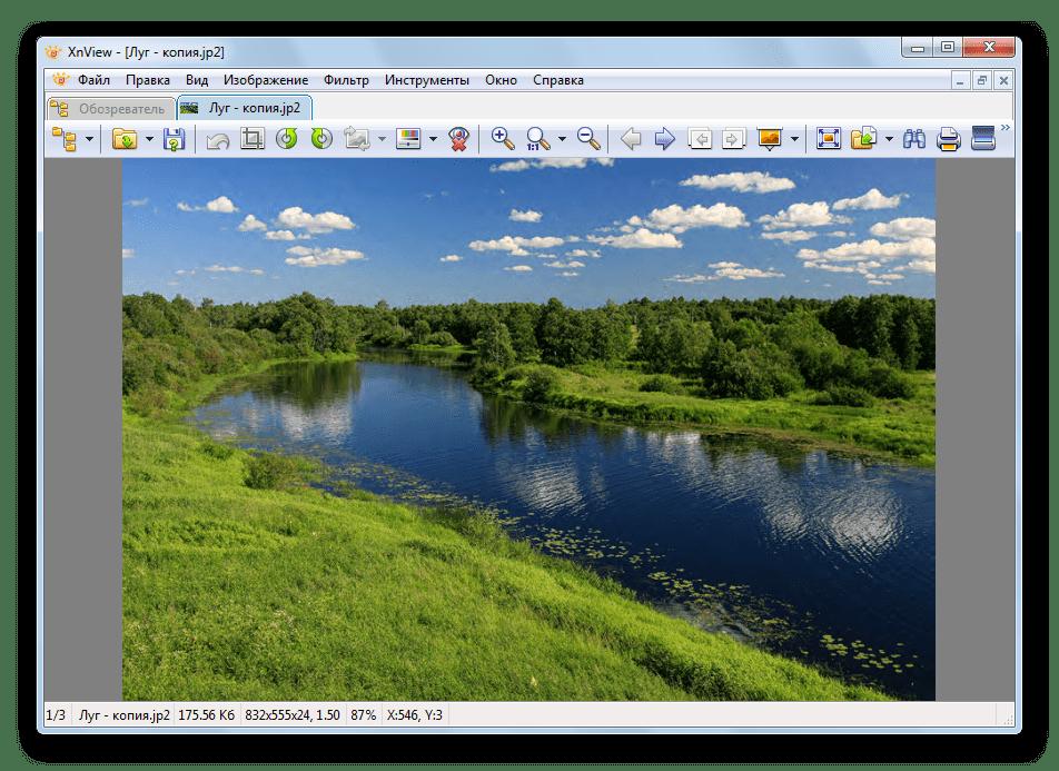 открытый файл xnview