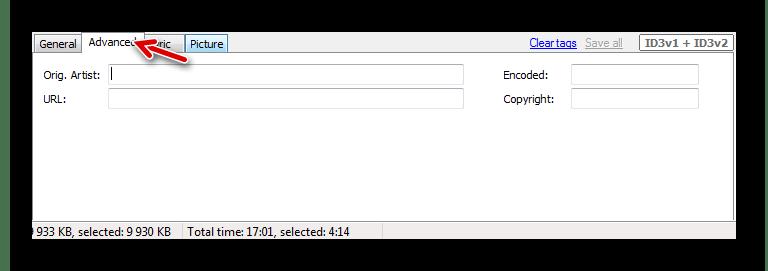 Дополнительные теги в Audio Tags Editor