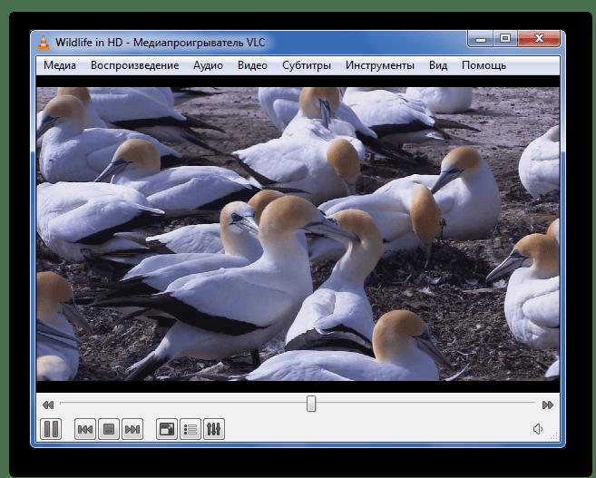 Воспроизведение WMV в VLC Media Player