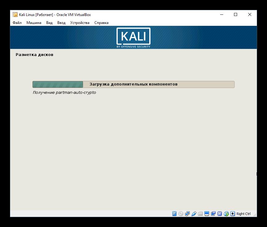 Второй этап автоматической настройки параметров для Kali Linux в VirtualBox