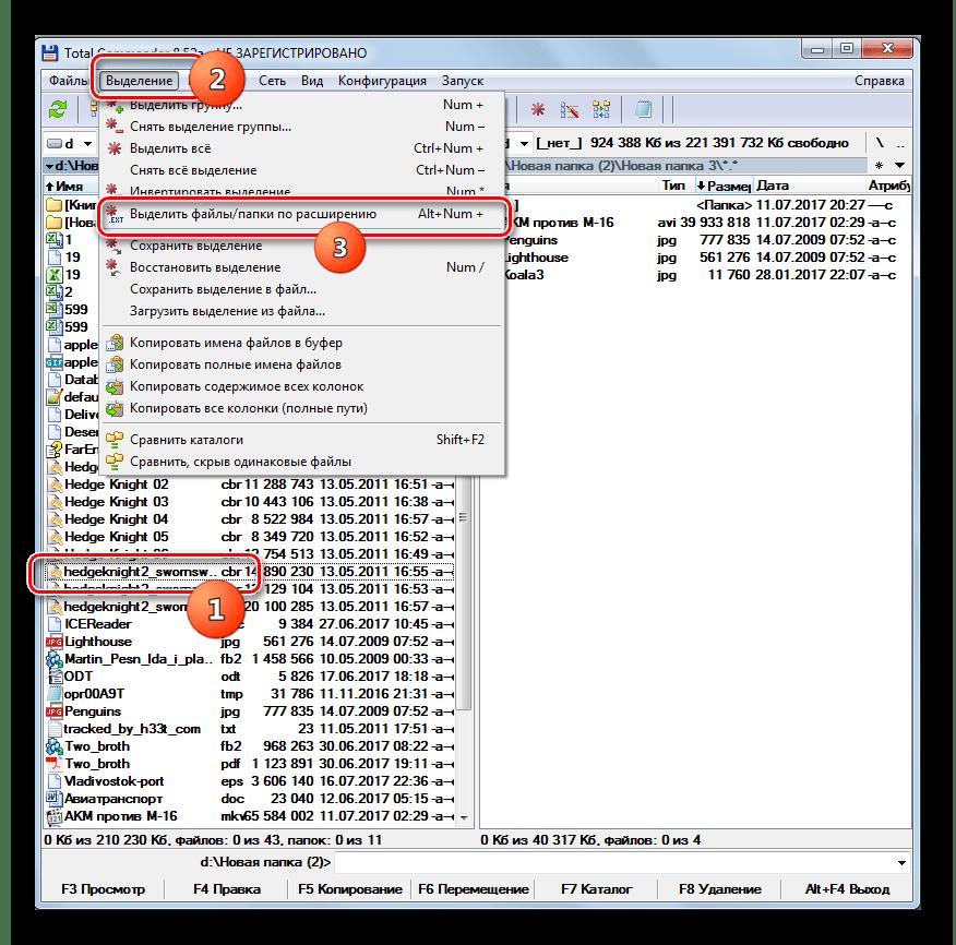 Выделение файлов по расширению в программе Total Commander