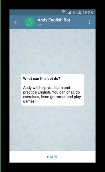 Бот изучения английского в Telegram