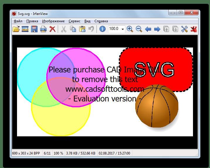 Файл SVG открыт в программе IrfanView
