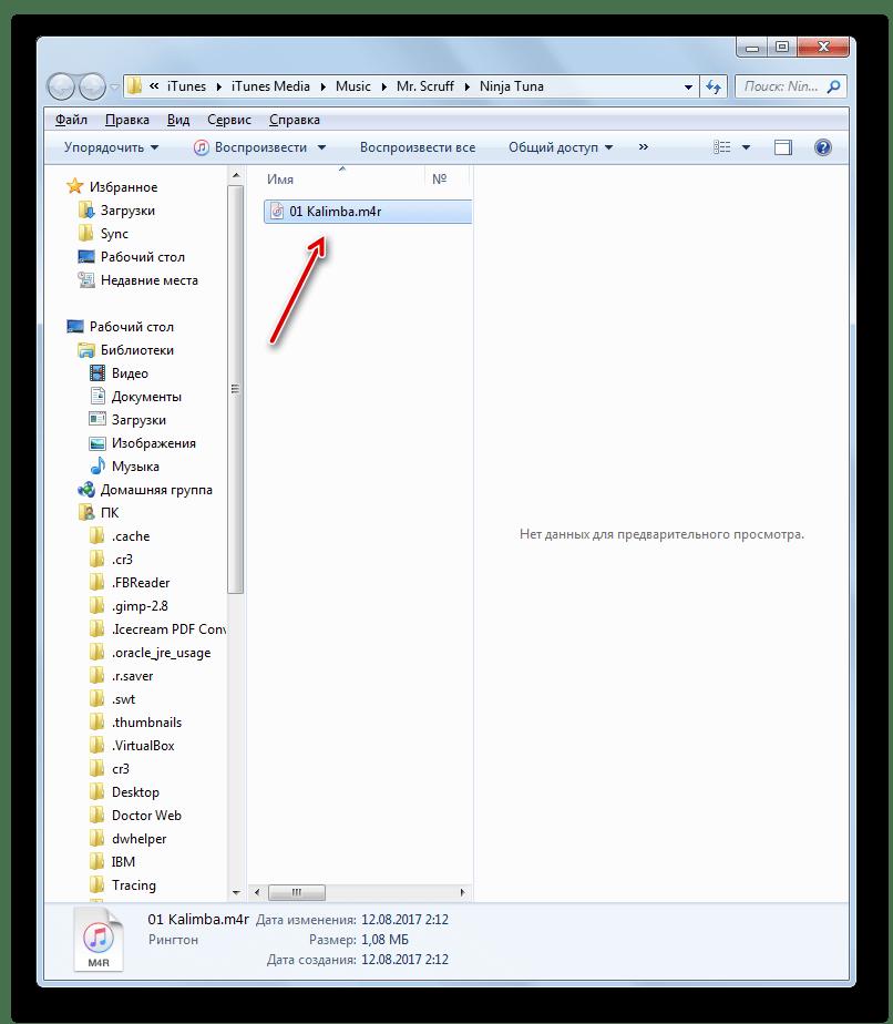 Файл преобразован в формат M4R