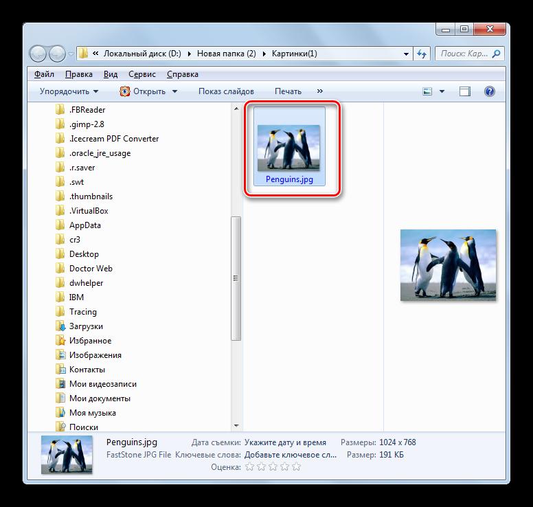 Конечная папка расположения преобразованного объекта в формате JPG в Проводнике Windows