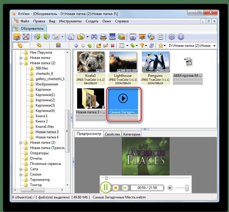 Переход к просмотру видео в отдельной вкладке в программе XnView