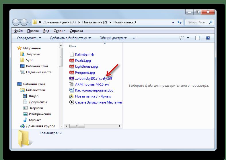 Преобразованный файл формата TIFF в папке своего расположения в Проводнике Windows