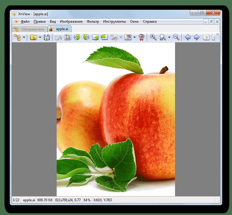 Содержимое файла в формате AI открыто в программе XnView