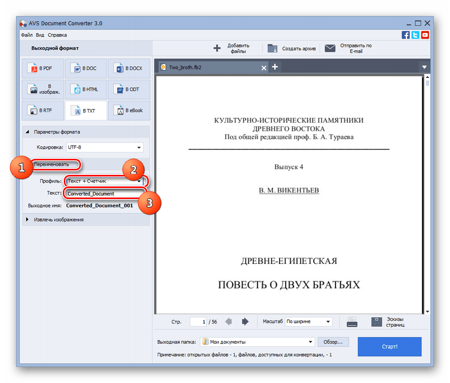 Блок настроек выходного формата преобразования Переименовать в программе AVS Document Converter