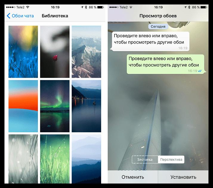 Обои для чатов в WhatsApp для iOS