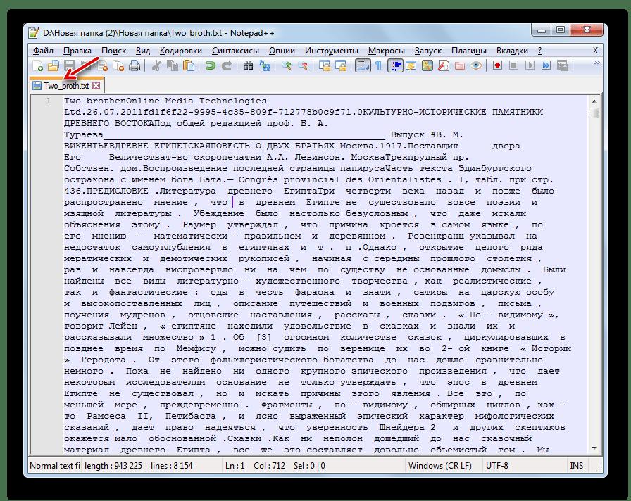 Текстовый файл сохранен в формате TXT в программе Notepad++