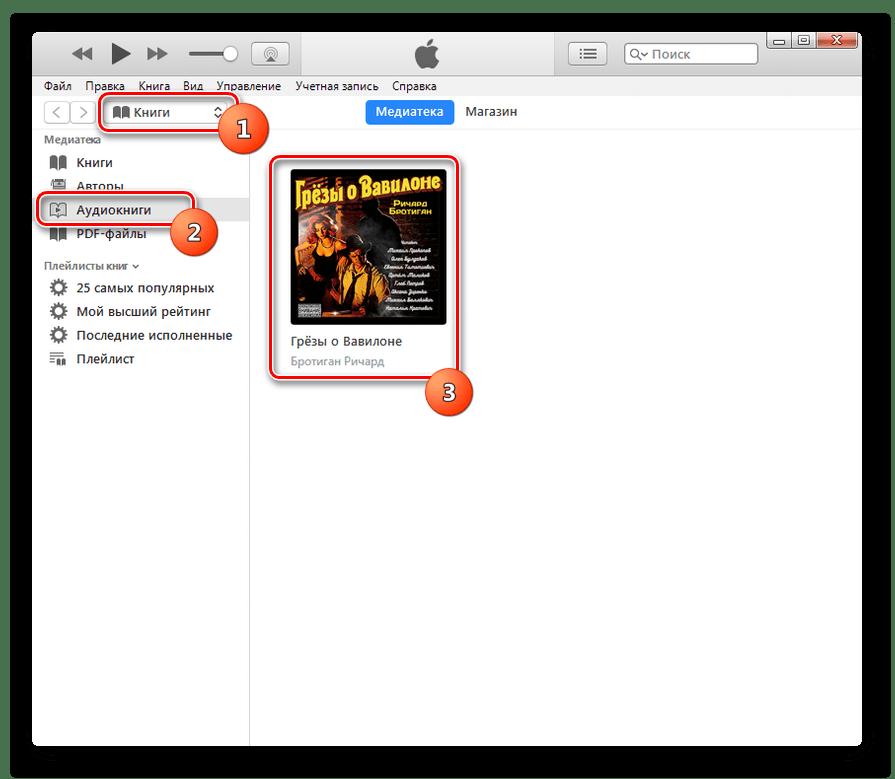 Запуск воспроизведения аудиокниги M4B в приложении iTunes