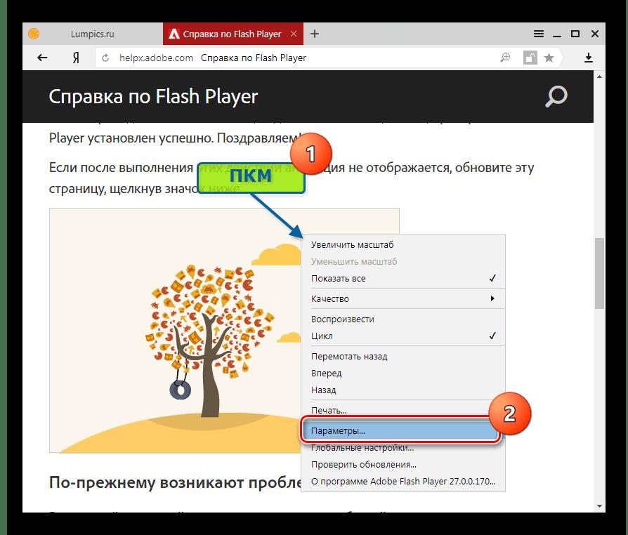 Adobe Flash Player в Яндекс.Браузер параметры Флеш Плеера