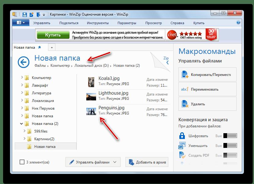 Файлы извлечены из архива ZIP в указанную пользователем директорию в программе PeaZip