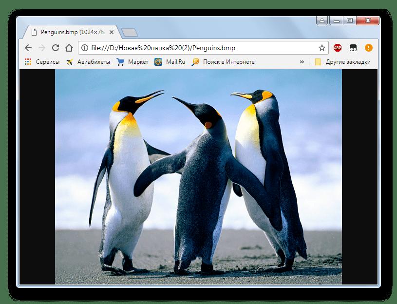 Изображение BMP открыто в браузере Google Chrome