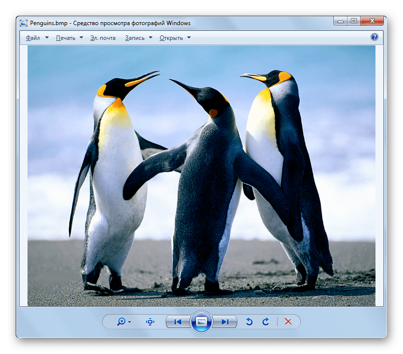 Изображение BMP открыто в оболочке средства для просмотра фотографий Виндовс в Windows 7