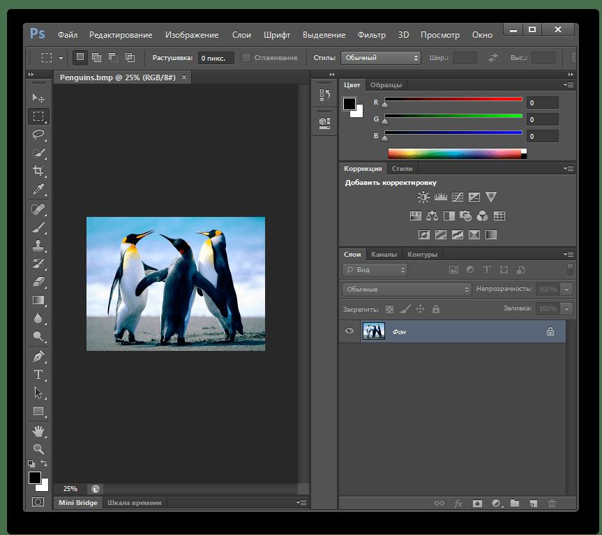Изображение BMP открыто в программе Adobe Photoshop