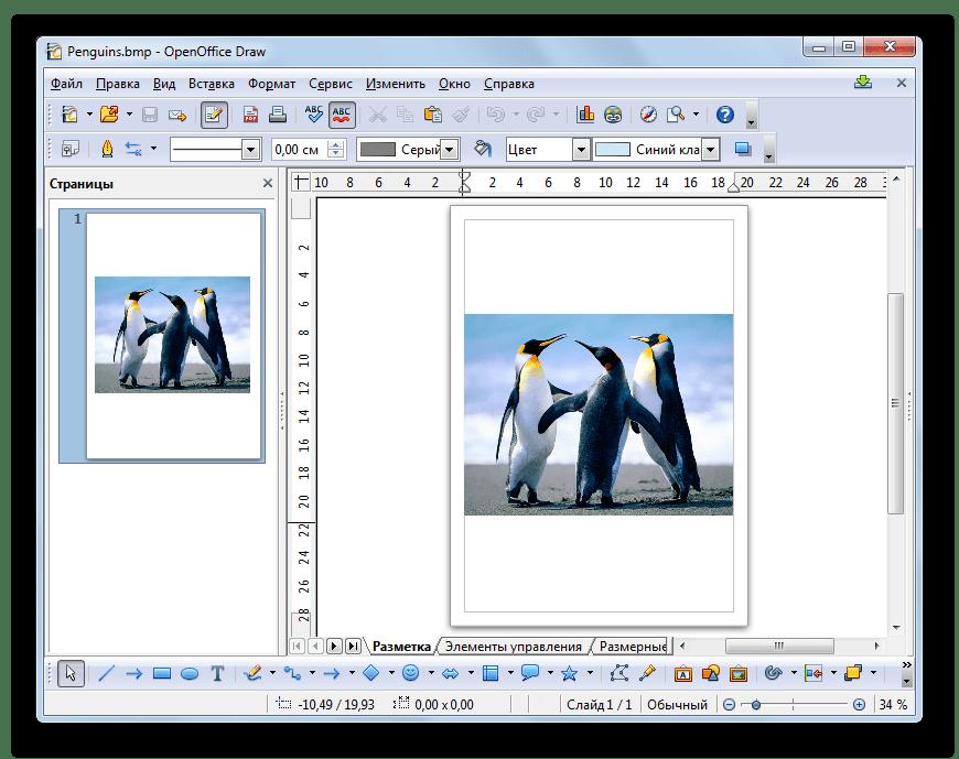 Изображение BMP открыто в программе OpenOffice Draw