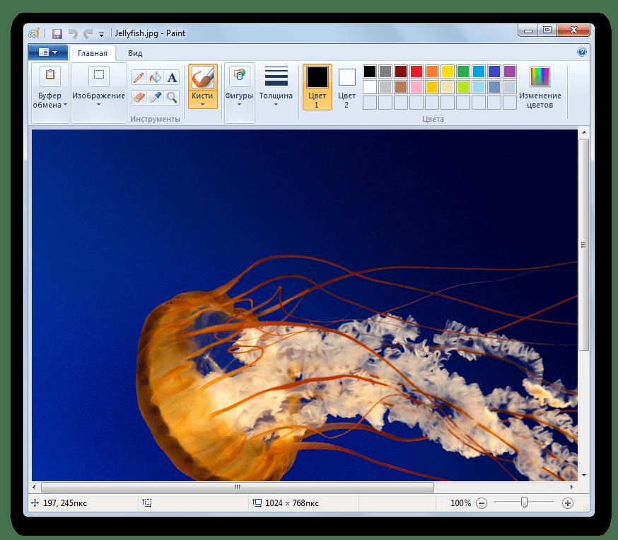 Изображения JPG открыто в программе Paint